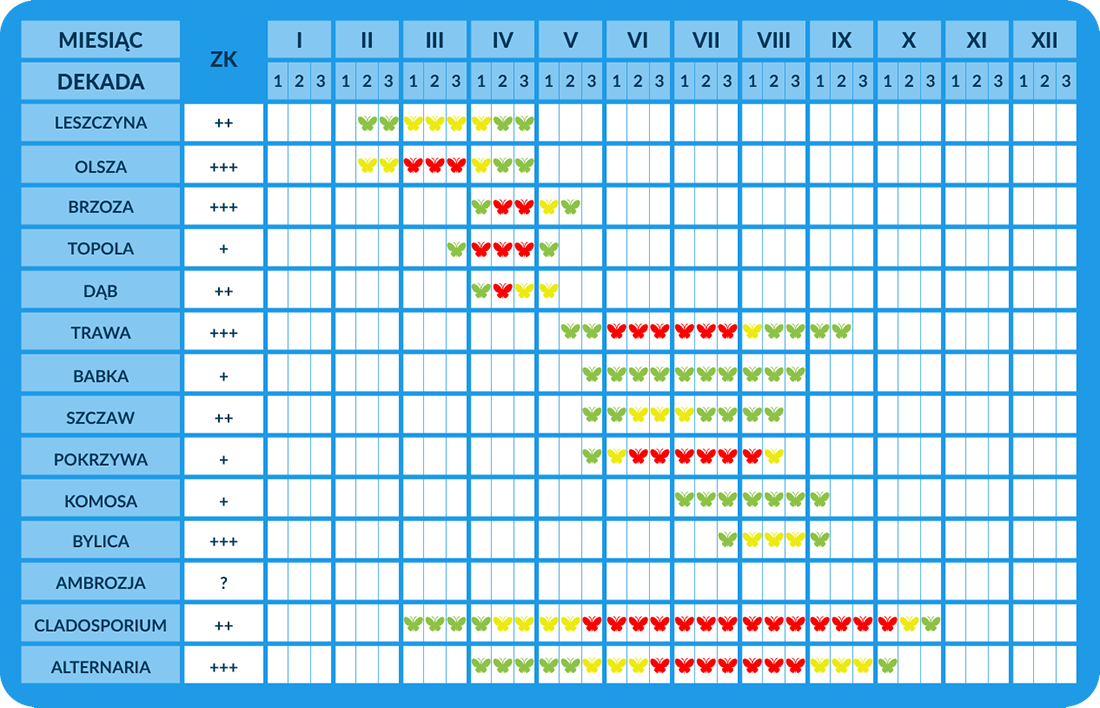 Region IV